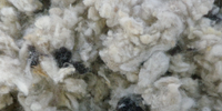 wool-ceiling-insulation-perth