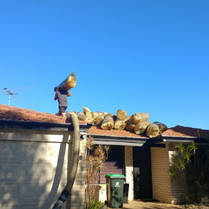 installing-ceiling-insulation-perth